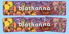 Flowers Display Banner Gaeilge