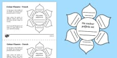 MFL French Colour Flowers Activity Sheet