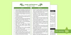 Jungle and Rainforest Fact Sheet for Adults