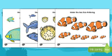 Under the Sea Fish Size Ordering