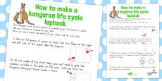 Australia - Kangaroo Life Cycle Lapbook Instruction Sheet