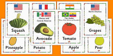 Fruit and Their Continents Cards