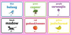 Colours Display Posters Somali Translation