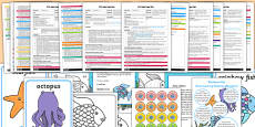 EYFS Adult Input Planning and Resource Pack to Support Teaching on The Rainbow Fish