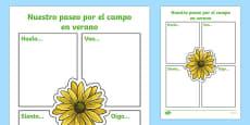 Our Summer Nature Walk Spanish Writing Activity Sheet Spanish / Español