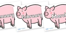 Months of the Year on Chinese New Year Pig