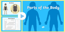 Parts of the Body PowerPoint English Medium