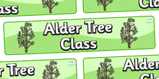 Alder Tree Themed Classroom Display Banner