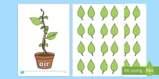 Phase Three Phonemes Beanstalk and Leaves Match