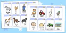 On the Farm Flash Cards Romanian Translation