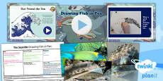 Art: The Seaside: Drawing Fish in Pen UKS2 Lesson Pack 1