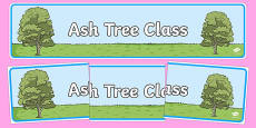 Ash Tree Themed Classroom Display Banner