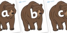 Phoneme Set on Bear