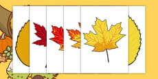 Editable Fall Leaves