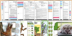 EYFS Adult Input Planning and Resource Pack to Support Teaching on Stick Man