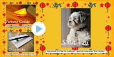 Australia Chinese New Year PowerPoint Photos