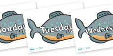 Days of the Week on Piranhas