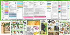 EYFS Jungle Themed Adult Input Planning and Resource Pack