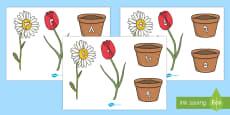 زهور مكونات العدد 10