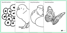Spring Colouring Sheets