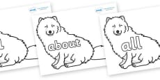 100 High Frequency Words on Arctic Foxes