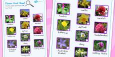 Flowers Hunt Sheet (Australia)