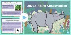 Javan Rhino Conservation PowerPoint