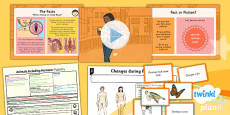 PlanIt - Science Year 5 - Animals Including Humans Lesson 3: Puberty Lesson Pack