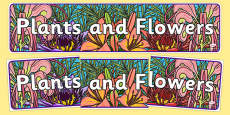 Plants and Flowers Display Banner