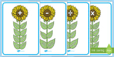Maths Vocab Flowers Display Posters