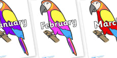 Months of the Year on Macaws