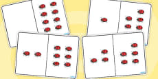 Ladybug Counting Number Bonds to 8
