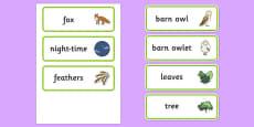 Owl Babies Word Cards