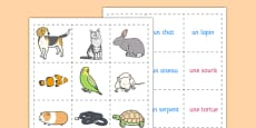 French Pets Memory Match Game