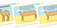 Alice the Camel Sequencing