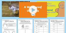 KS1 A Waterproof Umbrella Video Activity Pack