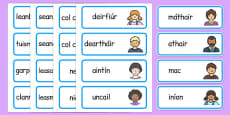 My Family Word Cards Gaeilge