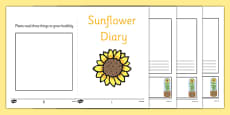 Sunflower Diary Writing Frame