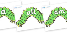Foundation Stage 2 Keywords on Hungry Caterpillars to Support Teaching on The Very Hungry Caterpillar