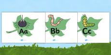 A-Z Alphabet on Minibeasts