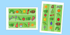 Australia - Display Borders to Support Teaching on The Very Hungry Caterpillar