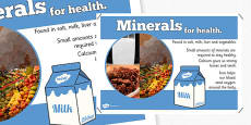 Year 6 Minerals Nutrients Display Poster