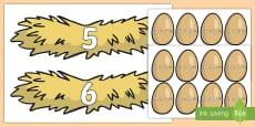 Adunări: Pune oul în cuibul potrivit Activitate