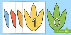 Números de exposición de dinosaurios
