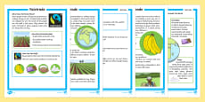 Fairtrade Differentiated Fact File