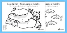 Under the Sea Colour by Number French