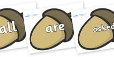 Tricky Words on Brown Acorns