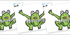 Months of the Year on Frogs