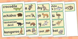Australian Animal Word Cards