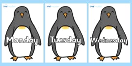 Days of the Week on Penguins
